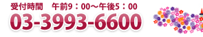03-3993-6600